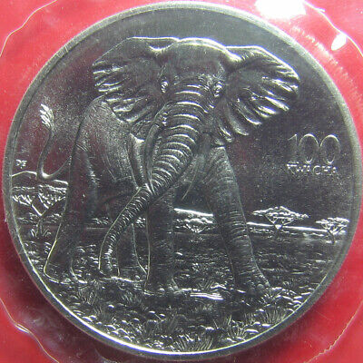 1997 ZAMBIA 100 KWACHA ELEPHANT MINT SEALED! AFRICAN WILDLIFE CU-NI (no silver)