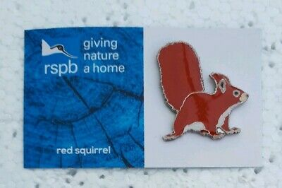 RSPB RED SQUIRREL charity pin badge GNAH BRAND NEW DESIGN CARD