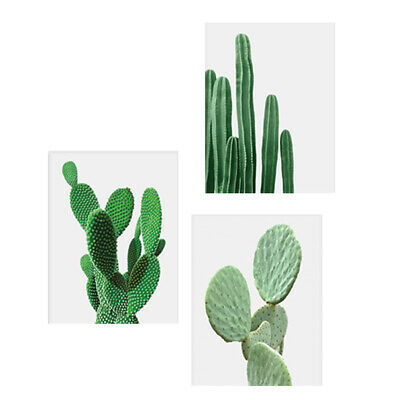 3 x Canvas Cactus Plants Wall Art Poster Home Art Decor Picture Paintings