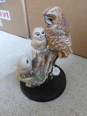 Border Fine Arts Tawny Owl And Young