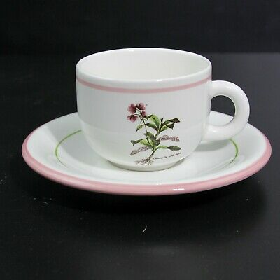 Excellent Primula Italy Floral Chimapila Umbellata Pattern Teacup & Saucer Pair