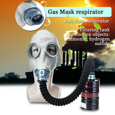 Full Face Respirator Painting Spraying Face Dust Gas Mask w/ Filter Tank Single