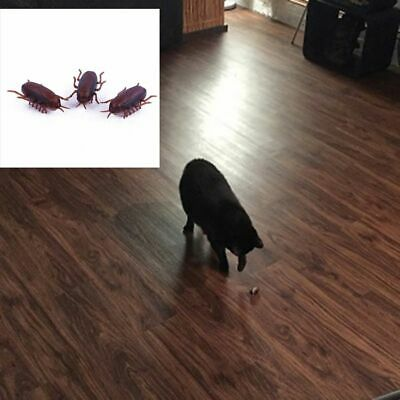 Electronic Cockroach Interactive Training Play Vibrating Insect Pet Cat Toy