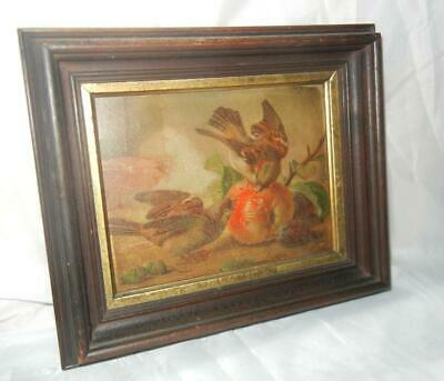 """Antique Oil On Board Painting Sparrow Birds & Fruit Period Frame 8 1/4"""" X 6 1/4"""""""