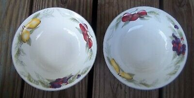 Set of 2 Todays Home Fruit Soup Cereal Salad Bowls Retired China