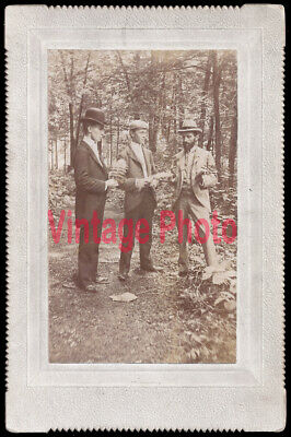 Unusual Victorian Cabinet Card Photo of 3 Gentlemen in the Woods Holding Ferns