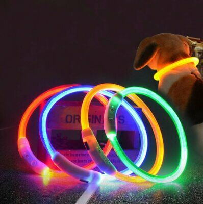 Adjustable Pet Collar LED Light Outdoor USB Rechargeable Glowing Safety p1