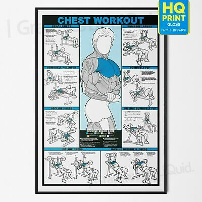 Professional CHEST WORKOUT Gym Fitness Training POSTER PRINT *LAMINATED* A4 A3
