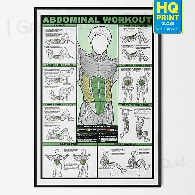 Professional ABDOMINAL AB WORKOUT Gym Fitness Training POSTER PRINT *LAMINATED*
