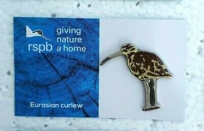 RSPB EURASIAN CURLEW charity pin badge GNAH BRAND NEW DESIGN CARD