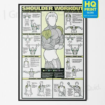 Professional SHOULDER WORKOUT Gym Fitness Training POSTER *LAMINATED* A4 A3