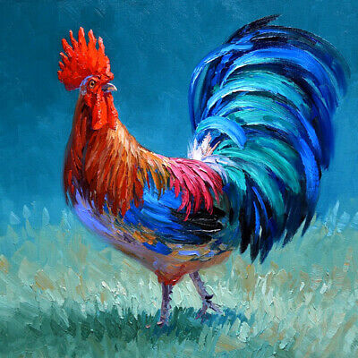 Colorful cock Oil Painting Giclee Art Printed on canvas L2738