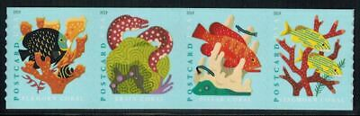 US Scott # 5367-70 Strip Of 4 Stamps From Coil MNH Coral Reefs 2019