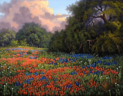 Texas Bluebonnets Landscapes Oil Painting Giclee Art Printed on canvas L2491