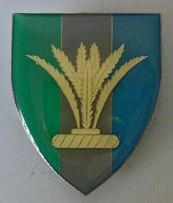 South African Army South West Africa Sector 10 Signals Plant Signal Arm Badge