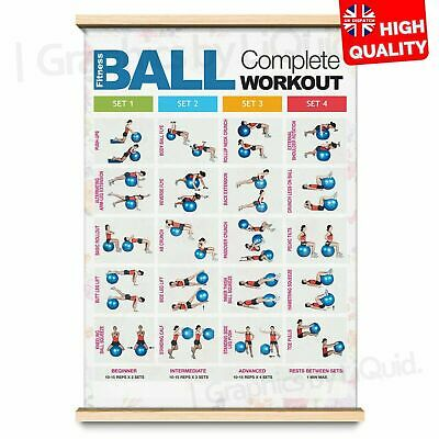 BALL WORKOUT Step Fitness Training Chart Exercise Poster PRINT *LAMINATED* A4 A3