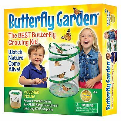 Butterfly Growing Kit - With Voucher to Redeem Caterpillars Later