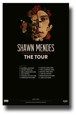 """Shawn Mendes Poster 2019 Concert Tour Promo 11""""X17"""" SHIPS SAMEDAY FROM USA"""