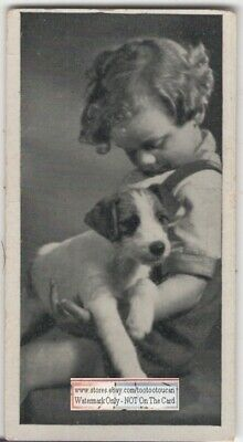 Wire Haired Fox Terrier Puppy With Young Child 1930s  Ad Trade Card