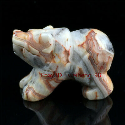 "top!2"" Natural Crazy agate Quartz Bear Carved Crystal Skull Healing Figurine 1PC"