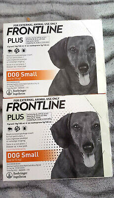 Frontline Plus 6 Pack 6 Month For small Dogs 0-22lbs New In Box