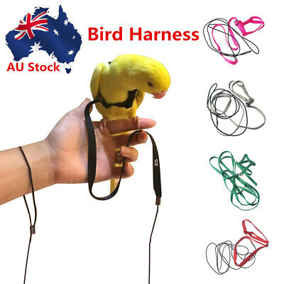 Pet Parrot Bird Harness With Leash Anti-bite Flying Rope Straps For Training AU