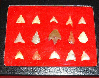 (15) MINI Assorted Sahara Neolithic Points W/CASE, Prehistoric African Artifacts