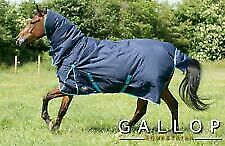 gallop 350g trojan combo heavy weight turnout rug