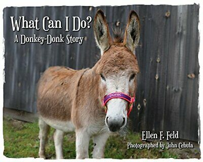 What Can I Do? A Donkey-Donk Story