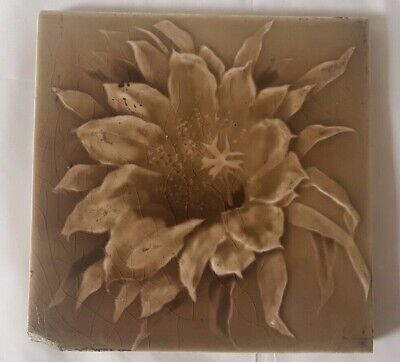Stunning English Floral Photographic Type 6 Inch 19Th Century Tile