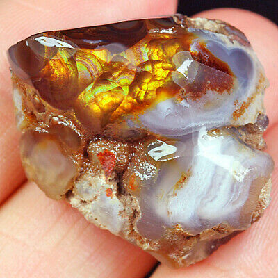 45.75Ct 100% Natural Mexican Multi-Colored Fire Agate Facet Rough YFM1821