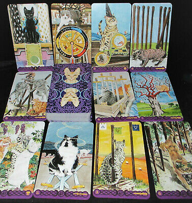 Open For Pics New! Pagan Cats Tarot Card Oracle Magical & Mysterious No Borders