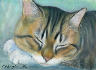 Sleeping Cat Original ACEO Watercolor Pencil Painting Catnap Kitten Seraphin-Art
