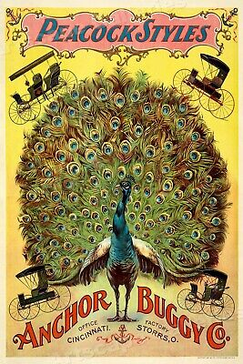 1897 Anchor Buggy Co. Peacock Styles Vintage Advertising Poster - 16x24
