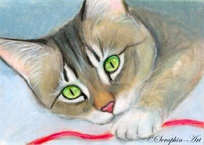 Tabby Cat Original ACEO Miniature Pencil Watercolor Kitten Painting Seraphin-Art