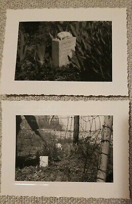 Pair Antique Photos Of Child's Grave Vintage Early 1900s SPOOKY Halloween
