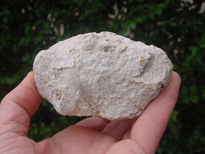 VERY LARGE Heat cracked Neolithic Flint POT BOILER Wiltshire England