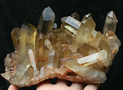 2.6lb Natural Clear Smoky Citrine Quartz Point Crystal Cluster Healing Mineral