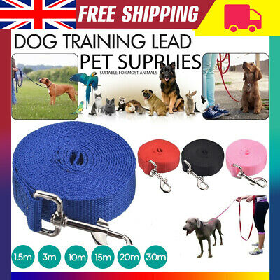 Pet Dog Training Lead Puppy Leash Collar Harness Long Line Strong Rope 3M 6M 15M