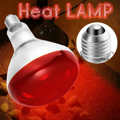 Heat Lamp With Red 250w Bulb Poultry Puppies Dog Kittens