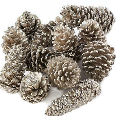 Factory Direct Craft Decorative Platinum Glittered Coated Natural Pinecones