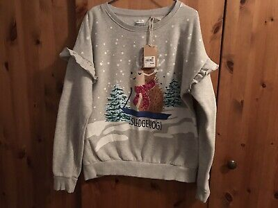 NEXT Girls Hedgehog Christmas Jumper Age 15 Brand New With Tags Cost £17