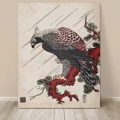 "Beautiful Vintage Japanese Bird Art ~ CANVAS PRINT 8x10"" Eagle on Branch"