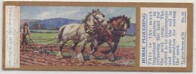 Horse Team Ploughing Field Farming Agriculture 1930sTrade Ad Card
