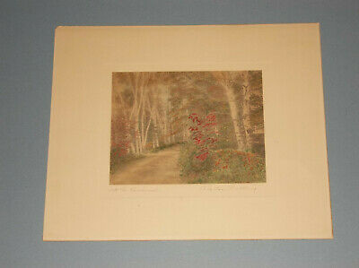 "Wallace Nutting Hand Colored Photo ""Into The Birchwood"" Unframed"