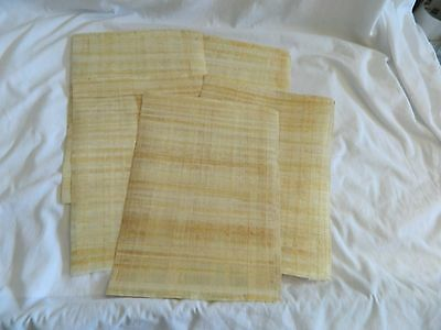 """1 Egyptian Plain Papyrus Paper for Painting 13""""X17"""" Great Quality and Price"""