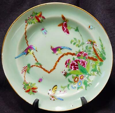 """Old Chinese Export Famille Rose Celadon Plate Bowl 10"""" Birds & Butterfly"""