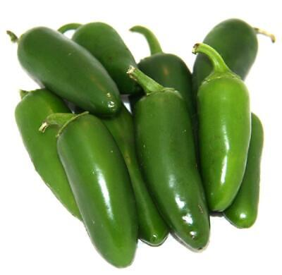 Hot Chilli Pepper Jalapeno Early 120 Finest Seeds (Certified Organic)