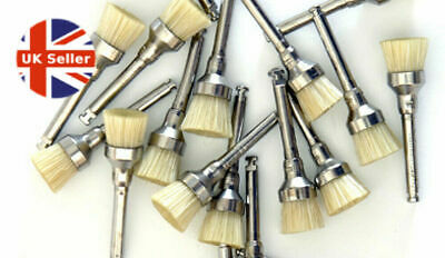 Prophy Brush Junior Cup R.A Bristle (100 brushes)