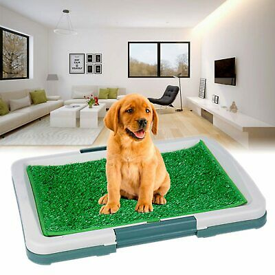 Pet Dog Puppy Toilet Pad Mat Indoor Training Grass Potty Pad Loo Clean Tray UK